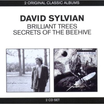 Brilliant Trees / Secrets Of The Beehive - David Sylvian