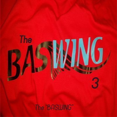 THE BASWING 3 - THE BASWING